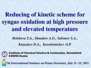 Institute of Chemical Kinetics & Combustion, Novosibirsk 630090 Russia