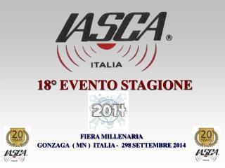 FIERA MILLENARIA GONZAGA  ( MN )  ITALIA -  298 SETTEMBRE 2014