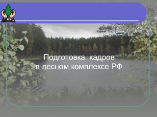Подготовка  кадров   в лесном комплексе РФ