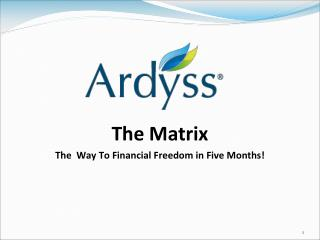 The Matrix The  Way To Financial Freedom in Five Months!