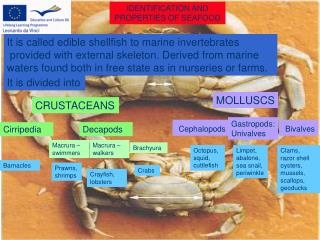 IDENTIFICATION AND  PROPERTIES OF SEAFOOD