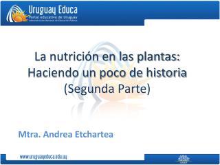La nutrición en las plantas: Haciendo un poco de historia (Segunda Parte)