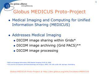 Globus MEDICUS Proto-Project
