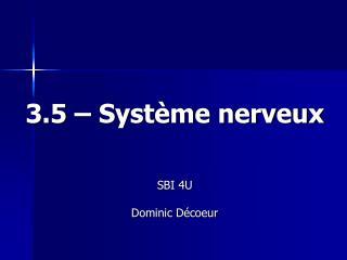 3.5 – Système nerveux