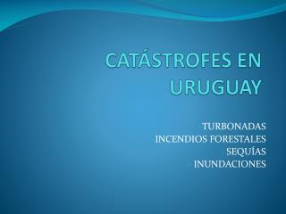 CATÁSTROFES EN URUGUAY