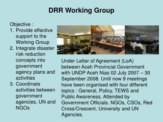 DRR Working Group