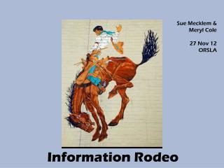 Information Rodeo