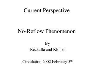 Current Perspective   No-Reflow Phenomenon
