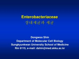 Dongwoo Shin  Department of Molecular Cell Biology Sungkyunkwan University School of Medicine