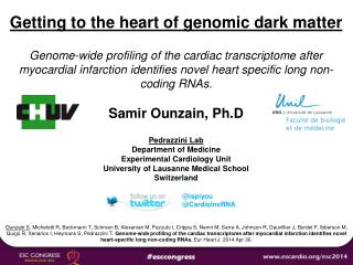 Getting to the heart of genomic dark matter