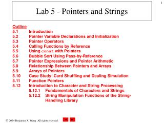 Lab 5 - Pointers and Strings