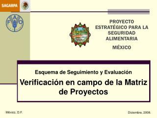 Esquema de Seguimiento y Evaluación Verificación en campo de la Matriz de Proyectos