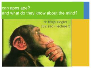 can apes ape? and what do they know about the mind?