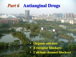 Part 6 Antianginal Drugs