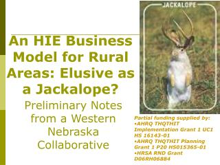 An HIE Business Model for Rural Areas: Elusive as a Jackalope?
