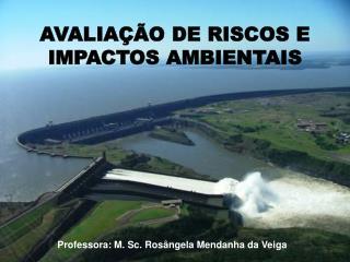 AVALIA��O DE RISCOS E IMPACTOS AMBIENTAIS