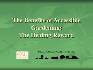 The Benefits of Accessible Gardening: The Healing Reward