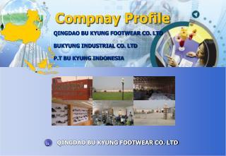 Compnay  Profile