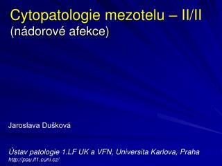 Cytopatologie mezotelu – II/II (nádorové afekce)