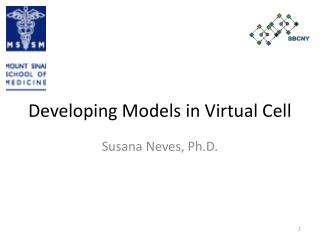 Developing Models in Virtual Cell