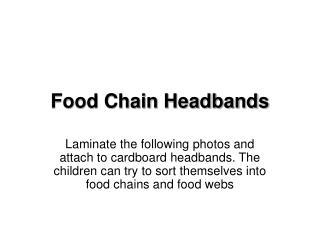 Food Chain Headbands