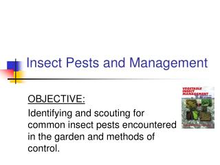 Insect Pests and Management