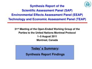 Synthesis Report of the  Scientific Assessment Panel (SAP)