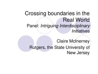 Crossing boundaries in the  Real World Panel:  Intriguing Interdisciplinary Initiatives