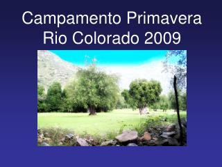 Campamento Primavera Rio Colorado 2009