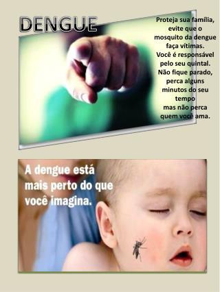 Proteja sua fam�lia, evite que o mosquito da dengue fa�a v�timas.