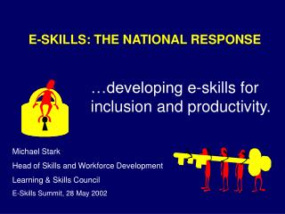 E-SKILLS: THE NATIONAL RESPONSE