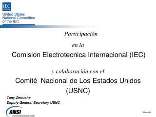 Participación en la Comision Electrotecnica Internacional (IEC) y  colaboración con el