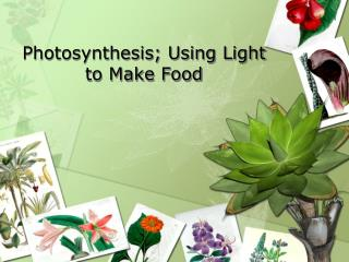 Photosynthesis; Using Light to Make Food