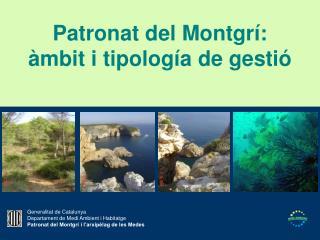Patronat del Montgrí: àmbit i tipología de gestió