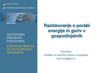 Raziskovanje o porabi energije in goriv v gospodinjstvih