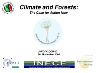 Climate and Forests:  The Case for Action Now
