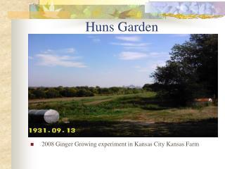 Huns Garden