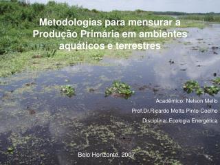Metodologias para mensurar a Produção Primária em ambientes aquáticos e terrestres