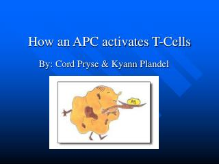 How an APC activates T-Cells