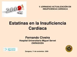 Zaragoza, 11 de noviembre  2009