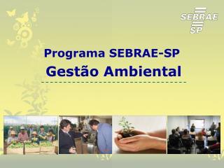 Programa SEBRAE-SP  Gestão Ambiental