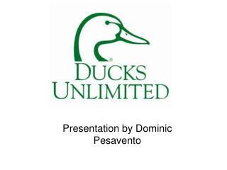 Presentation by Dominic Pesavento