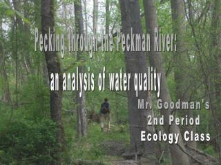 Pecking through the Peckman River: an analysis of water quality