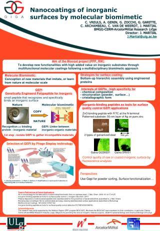 Nanocoatings of  inorganic  surfaces  b y molecular biomimetic