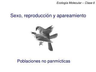 Sexo, reproducción y apareamiento