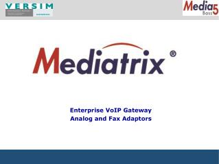 Enterprise VoIP Gateway  Analog and  Fax Adaptors