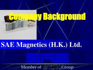 SAE Magnetics (H.K.) Ltd.