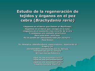 Estudio de la regeneración de tejidos y órganos en el pez cebra ( Brachydanio rerio)