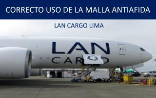 CORRECTO USO DE LA MALLA ANTIAFIDA