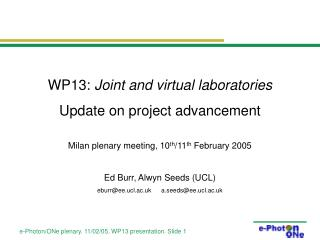 WP13:  Joint and virtual laboratories Update on project advancement